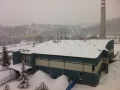 snehpb